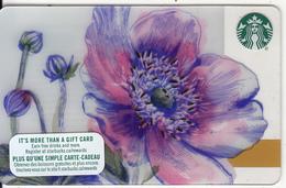 CANADA - Flower, Starbucks Card, CN : 6134, Unused - Gift Cards