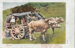 Types De Caucase - Char à Boeufs (buffles) - Carte Au Dos Simple, Colorisée - Asie