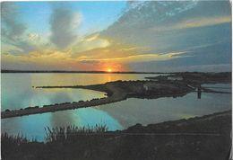 FORMENTERA - Puesta De Sol En Las Salinas - Formentera