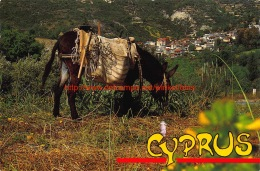 Mountain Village And Local Transport - Cyprus - Chypre