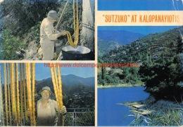 Sutzuko At Kalopanayiotis - Cyprus - Chypre