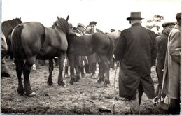 50 LESSAY - Grande Foire Sainte Croix - La Foire Aux Chevaux N°15 - Agriculture
