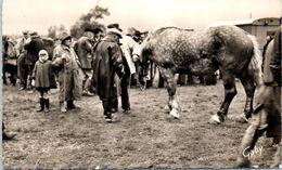 50 LESSAY - Grande Foire Sainte Croix - La Foire Aux Chevaux N°14 - Agriculture