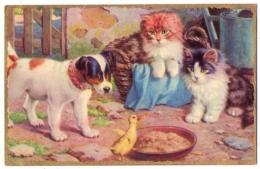 (chats) 209, Photochrom 503, Chaton Et Poussin - Chats