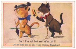 (chats) 219, Chat Humanisé Par Mc Gill - Gatti