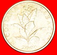 § LATIN TEXT: CROATIA ★ 10 LIPA 2004.! LOW START★ NO RESERVE! - Croatie