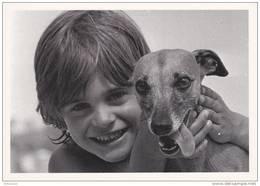 """Fidèle Ami"", Photo De Bernard Raulet. - Hunde"