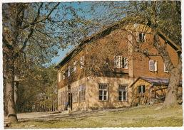 Pernitz, Muggendorf - Schutzhaus WAXENECK ( Mit HUND) , 785 M - NÖ - (Austria/Österreich) - Pernitz