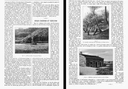 RIVAGES MARITIMES Et VEGETATION  ( ROYAN-SOULAC -POINTE DE GRAVE ) 1903 - Aquitaine