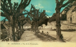 Altkirch. Vue De La Promenade - Altkirch