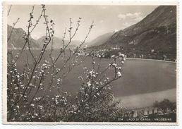 Y4305 Malcesine (Verona) - Lago Di Garda - Panorama / Non Viaggiata - Italia