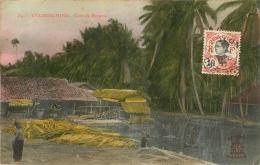 COCHINCHINE  COIN DE BROUSSE - Vietnam