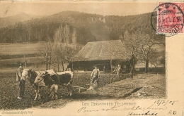 DES LANDMANNES FELDARBEIT  1905 AGRICULTURE CHARRUE BOEUFS - Sin Clasificación