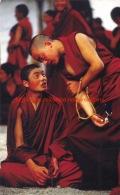 Monks Debating - Nepal - Népal