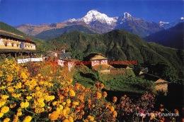 View From Ghandruk - Nepal - Népal