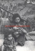 Children Of The Street - Shangrila - Nepal - Népal