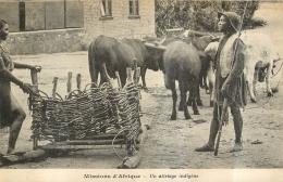 MISSIONS D'AFRIQUE UN ATTELAGE INDIGENE - Unclassified