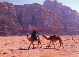 Wadi Rum - Jordan - Jordanie