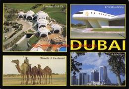 Views Of Dubai - Dubai