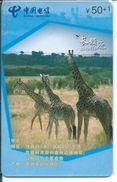 Girafe Giraffe Jungle Animal Télécarte Puce  Phonecard  Karte (S.270) - Chine