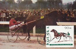 D30546 CARTE MAXIMUM CARD 1967 POLAND - HORSE RACING SULKY CP ORIGINAL - Horses