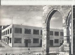 SAVONA  BANCA D'ITALIA ,PANORAMA.VIAGGIATA-1955-FG.75-T - Savona