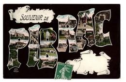 31 - PIBRAC . SOUVENIR DE PIBRAC - Réf. N°3521 - - Pibrac