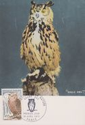 Carte Postale FDC - Carte Maximum - 1972 PARIS - Grand Duc - Eagle Owl - Aigles & Rapaces Diurnes