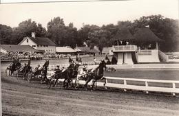Course Frot Attelé - Paarden