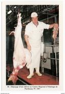 Parthenay Deux Sèvres Boucher Abattant Une Chèvre Aventure Carto Tirage Limité 1989 état Superbe - Parthenay