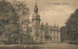 BE  CAPELLEN /  Starrenhof / - België