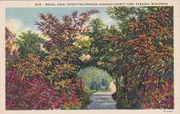 Wisconsin Kenosha Bridal Arch Petrifying Springs Kenosha County Park Curteich - Kenosha