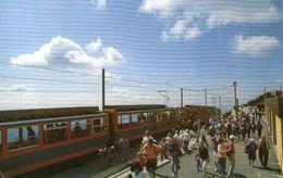 B 1338 - Treni  Stazione Monte Generoso - Estaciones Con Trenes
