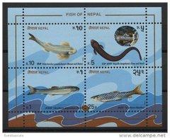 NEPAL, SOUVENIR SHEET FISHS MNH - Népal