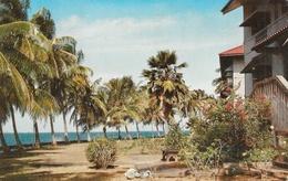 Hermosa Seccion Residencial - Fuerte De Lesseps, Costa Atlantica - Colon, Panama (canal Zone) - Panama