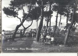 GIOIA TAURO  PARCO RIOMEMBRANZE,PANORAMA,viaggiata-1955-fg-141-t - Reggio Calabria