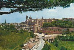 Urbino - Panorama   Italy   # 06534 - Urbino