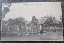 Maurice Ile Jardin Botanique   Cpa  Mauritius - Maurice