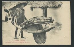 Tonkin - Hanoi - Conducteur De Brouette Transportant Des Cochons     - Odf97 - Vietnam