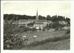 Weillen Eglise Et Château - Onhaye
