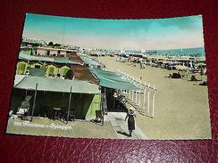 Cartolina Riccione - La Spiaggia 1955 - Rimini