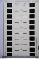 LESTRADE :    MARSEILLE   N°2 - Visionneuses Stéréoscopiques