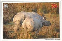 Couple De Rhinocéros Unicorne D'INDE, Carte Postale Adressée ANDORRA, Avec Timbre à Date Arrivée - Rhinocéros