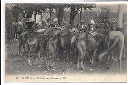 LUCHON - La Foire Aux Chevaux - Luchon