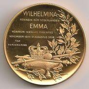 Medal Netherland - Wilhelmina Koningin & Emma Regentes - - Netherland
