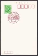 Japan Commemorative Postmark, Ptarmigan (jch6620) - Japan