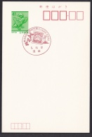 Japan Commemorative Postmark, JAPEX'93 Butterfly Dragonfly (jch6625) - Japan