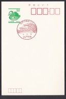 Japan Commemorative Postmark, Plum Festival Mito (jch6648) - Japan