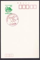 Japan Commemorative Postmark, Cross Country Ski (jch6652) - Japan