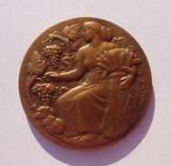 Médaille Bronze République Française - Associations Agricoles - Ministère De L'Agriculture - Dim. 5 Cm - Poids 63 Grs  - - Militaria